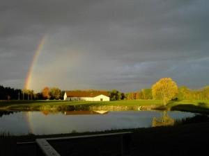 top rainbow pic